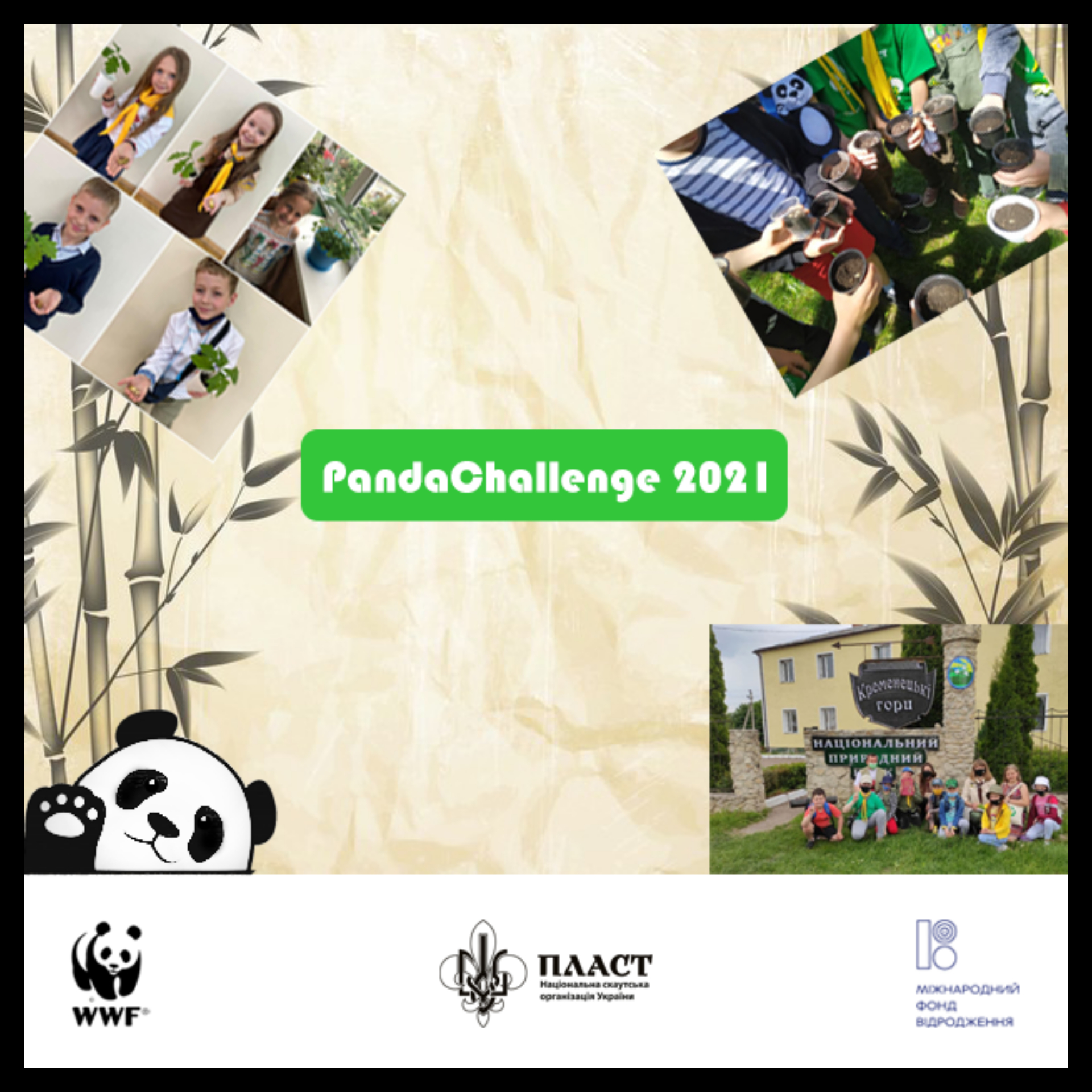 Завершення #PandaChallenge 2021